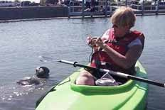 Private Manatee Kayak Tours Merritt Island