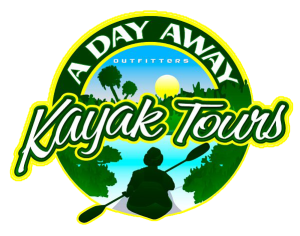If you are planning a vacation, we are your gateway. We specialize in kayak rentals and tours from all over the state of Florida. Book your next adventure today!