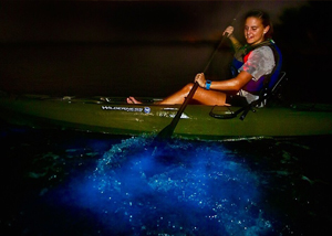 Schedule with A Day Away Kayak Tours and be amazed with a Bioluminescence Dino Kayak Vacation in Florida's Indian River and Mosquito Lagoon.