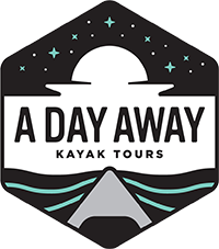Call A Day Away Kayak Tours and Reconnect with Nature down Florida's Silver River Today!